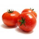 Tomate Primera 1 Kg Aprox. <hr>1.92€ / Kilo.