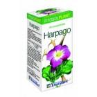 Harpago 80 Comprimidos <hr>4.92€ / Unidad